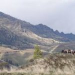 Haunted Hells Canyon – Wallowa – Whitman National Forest