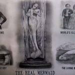 Mermaids: real or fake?