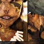 Vietnam: Recent & Wartime Reptilian Cave Encounters