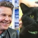 Dennis Quaid, the actor, adopts Dennis Quaid, the cat